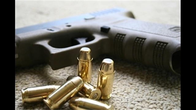 Palmer ISD Moves Forward With Plans to Arm Teachers