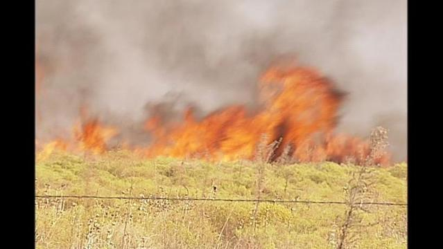 Wilbarger County Institutes 30-Day Burn Ban