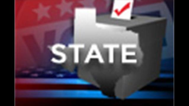 Texas Primary Voters Guide