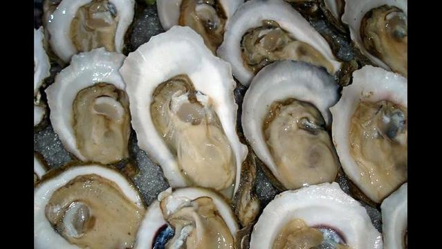 Frederick to Host Oyster Feast Saturday
