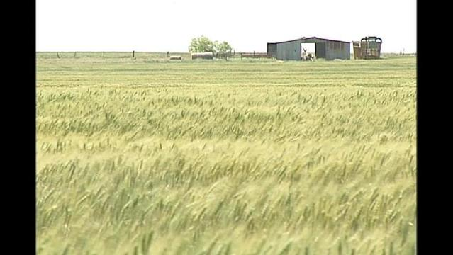 Farm Bill Passes Congress, Heads to Obama for Signature