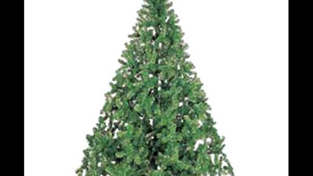 City of Wichita Falls Offering Christmas Tree Disposal Service