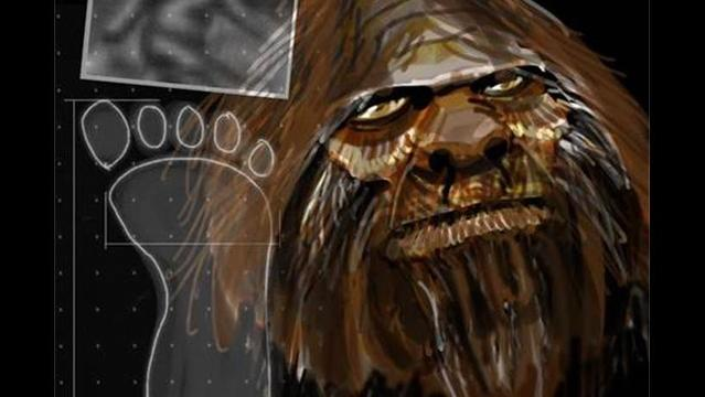 Meet Your Uncle Bigfoot: DNA Report Claims Beast Part Human
