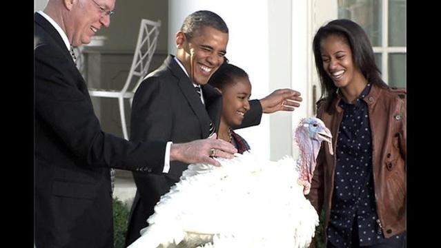 Obama Pardons Cobbler the Turkey