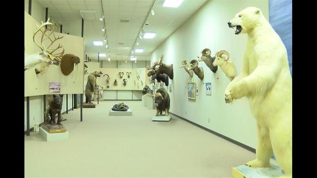 Touring Texoma: Vernon's Red River Valley Museum