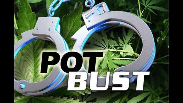 2 Men Charged With Possession of Marijuana
