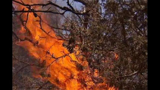 Possum Kingdom Lake Fire Now 80 Percent Contained