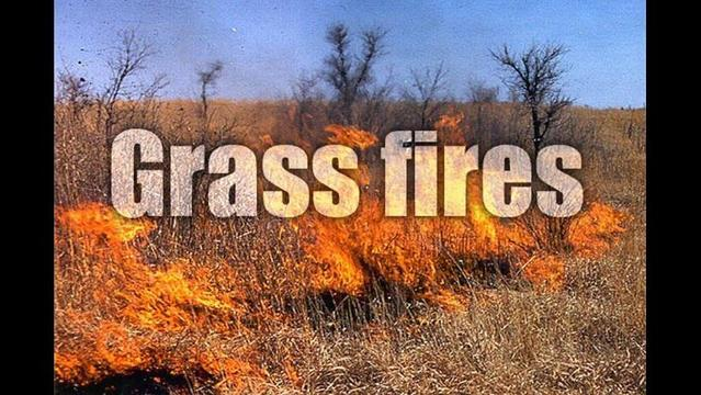 Grassfire Burns Nearly 30 Acres in Wichita County