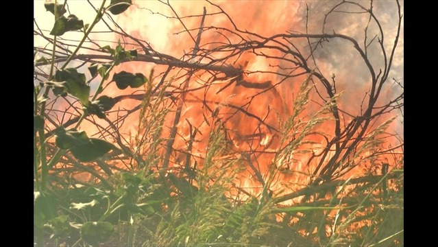 Grass Fire Cause Remains Under Investigation