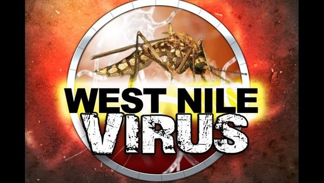 Third West Nile Virus Case in Mosquito Confirmed in W.F.