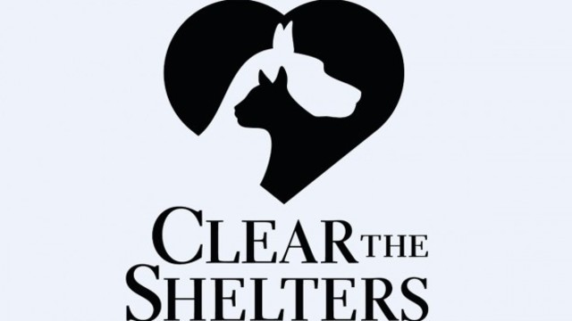Clear the Shelters: Humane Society of Wichita County